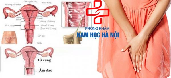 cach-tri-ngua-vung-kin-hieu-qua